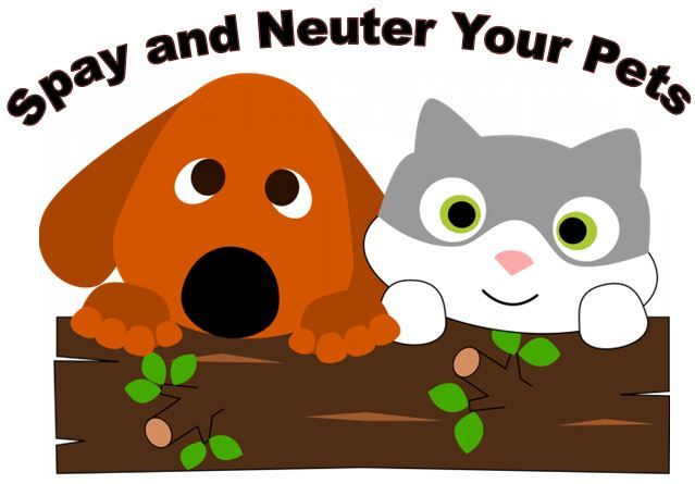 Spay and Neuter 2